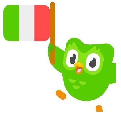Can i become fluent with duolingo