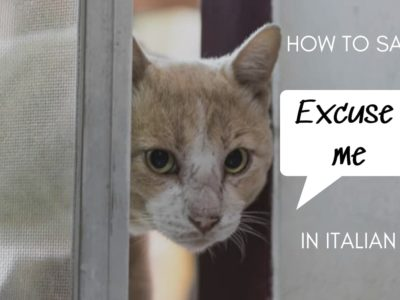 how to say excuse me in italian