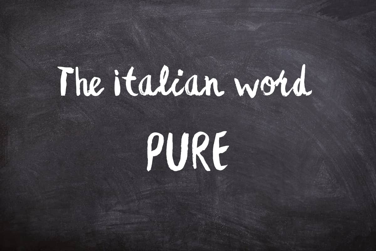 pure italian to english meaning