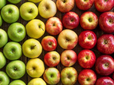segreto mela 1
